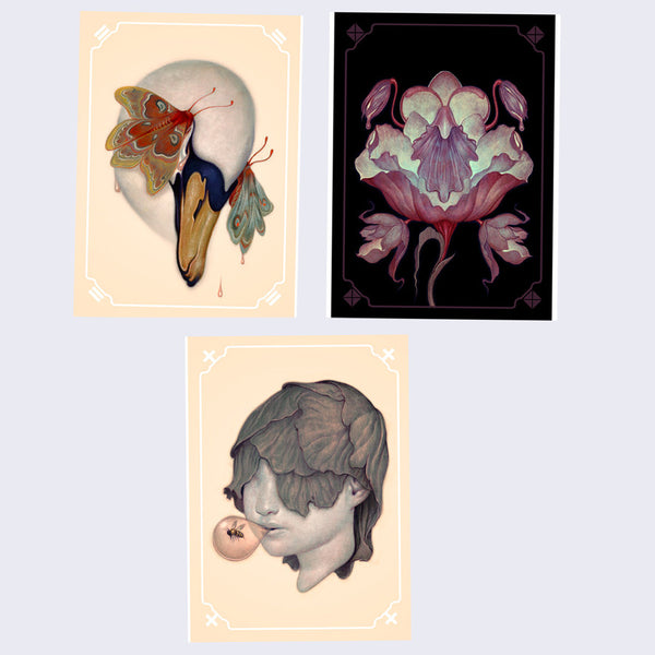 James Jean - SKRWL Tryptych Journal Set