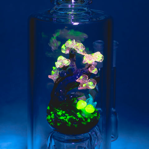 UV Reactive Bioluminescent Wonderland
