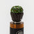 Green/Brown - Wide Bore Cupcake Glass Drip Tip