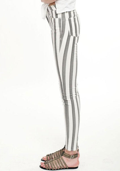 IRO : STRIPED SKINNY PANTS, METALLIC GREY/WHITE $210