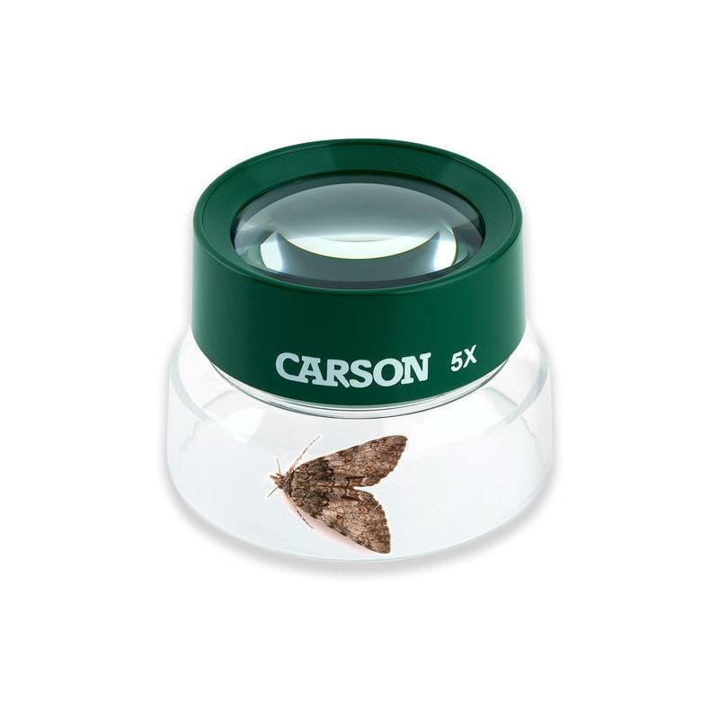 Carson BugLoupe 5x Kids Magnifier with bug