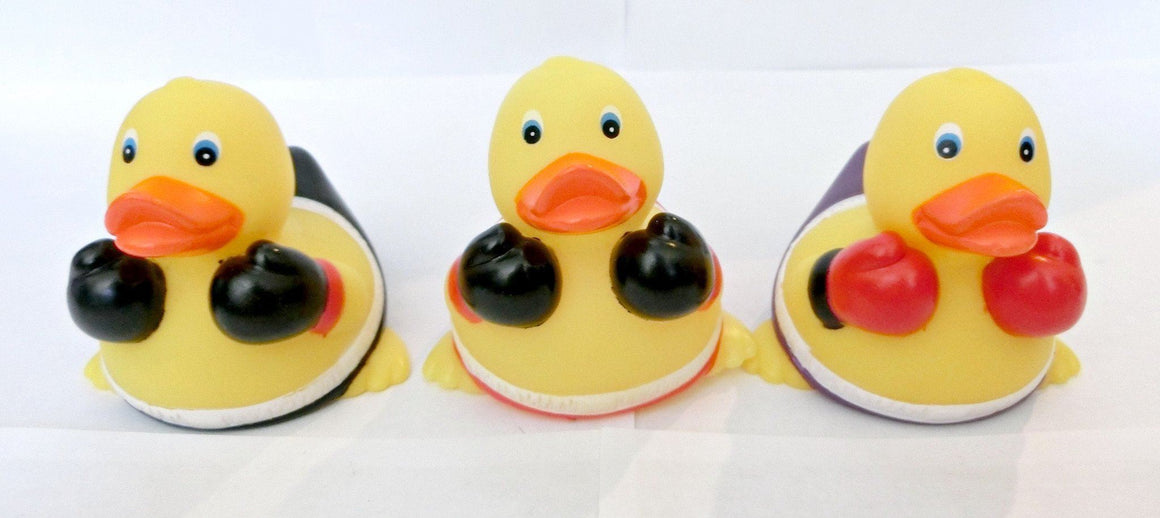 Boxing Rubber Duck