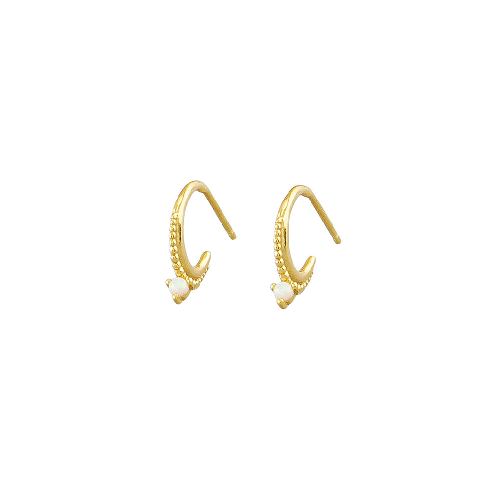 Gill Sleeper Earrings