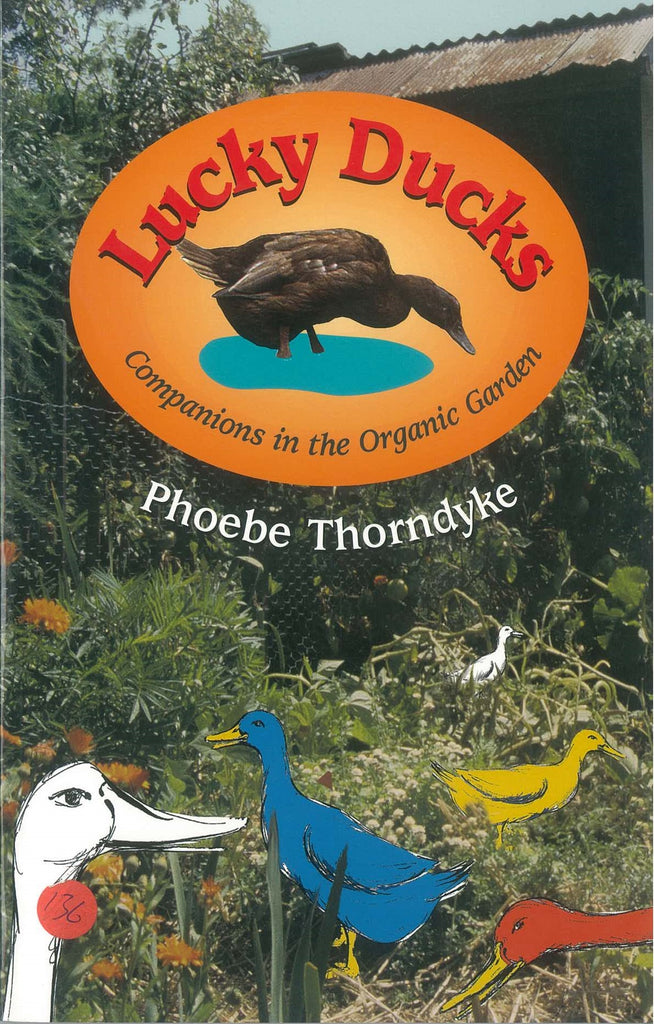 Lucky Ducks by Phoebe Thorndyke
