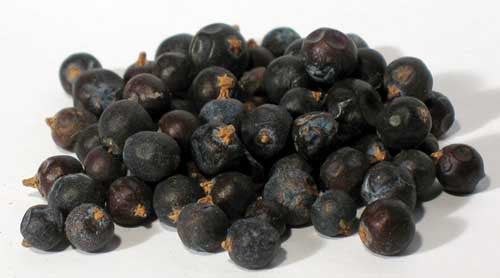 Juniper Berries/Organic