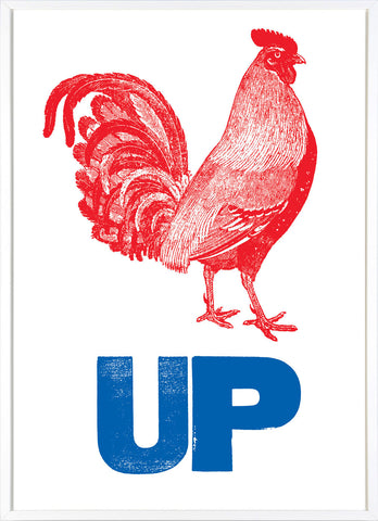Cock Up (Red and Blue)