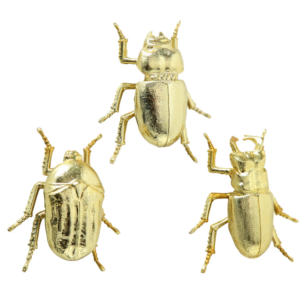 Gold Beetle Décor - 3 Assorted Choices