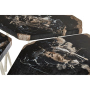 Relic Light Petrified Wood Coffee Table