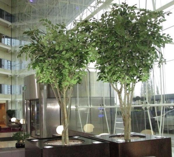 Artificial Ficus Tree Extra Large - with Granite Cube Planter  *Special Order*