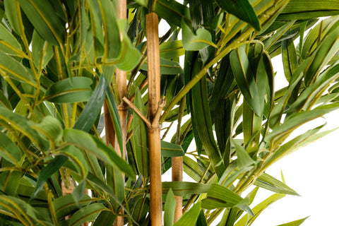 Artificial 2m Bamboo Tree