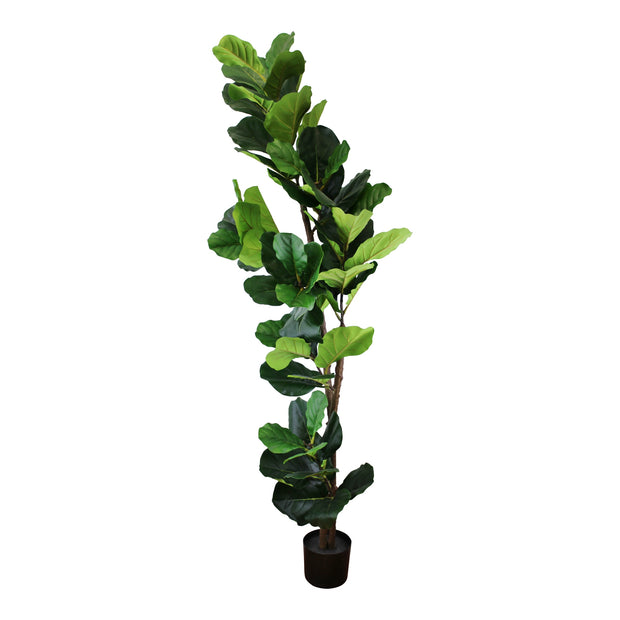 Artificial Fiddle Leaf Fig Tree 180cm