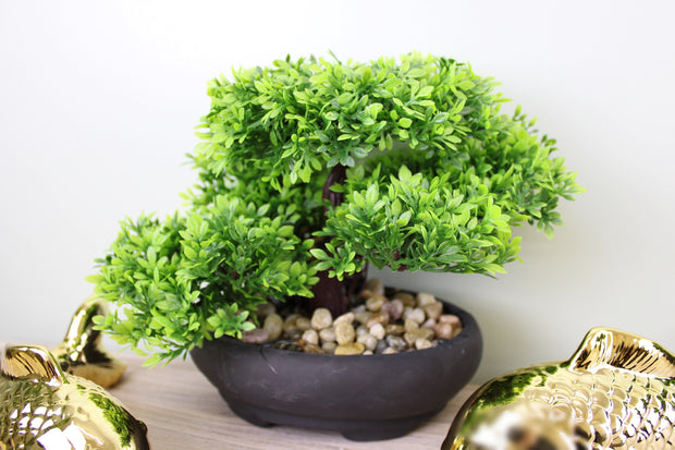 Eastern Faux Bonsai Tree in Boxwood Style