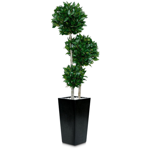 Artificial Bay Ball Tree - 3 Balls