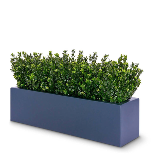 Bushes Plant Arrangement in Planter