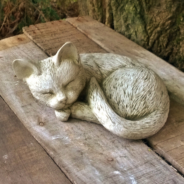 Stone Curled Up Cat