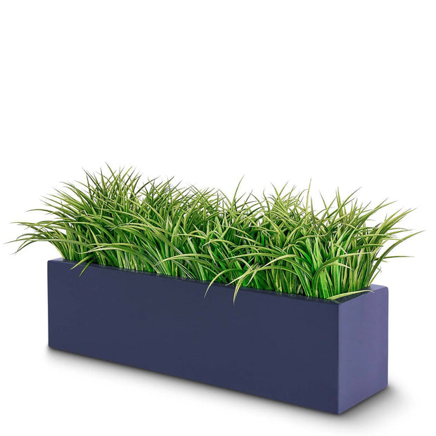 Grass Plant Arrangement in Planter