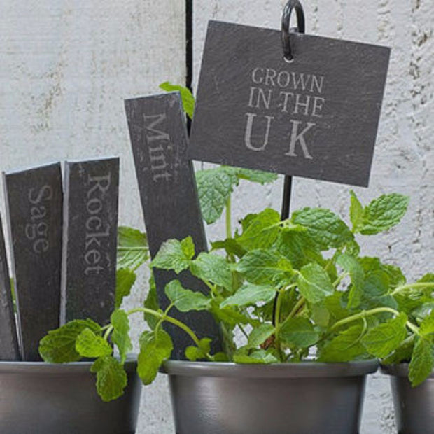 """Grown in the UK"" Plant Tags - Allissias Attic  &  Vintage French Style"