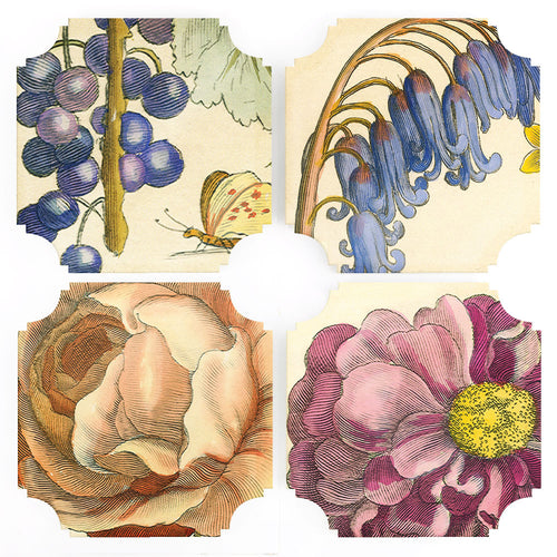Coasters | Hollar Floral Coaster, set of four