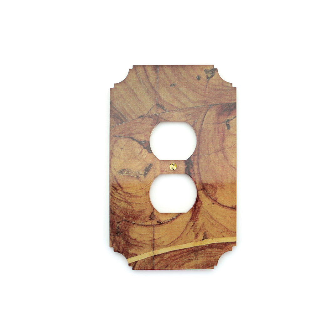 Printed Outlet Cover Plate | Oyster Wood
