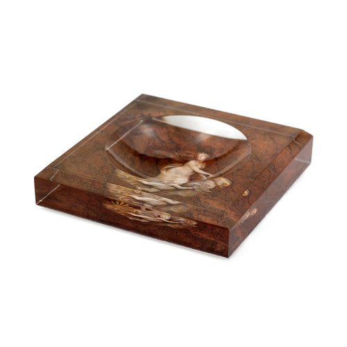 Acrylic Block Soap Dish | Venus in Brown