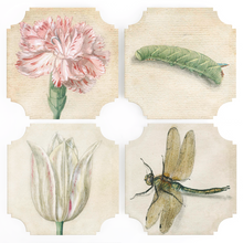 Load image into Gallery viewer, Coasters | Bots + Bugs, set of four