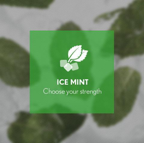 Ice Mint E-Juice - I Love Vapour