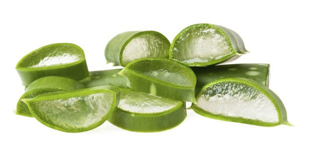 Aloe Vera And Anti-aging