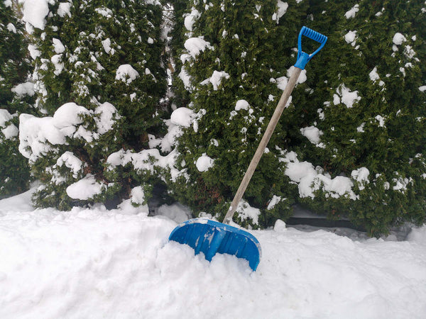 Six Eco-Friendly Snow Removal Options for Your Home