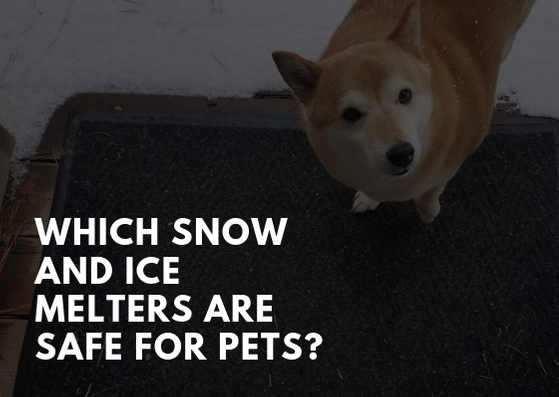 Which Snow and Ice Melters Are Safe for Pets?