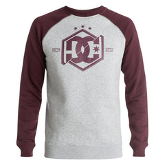DC Hepta Raglan CR P/O Hooded Men's Sweatshirt - Port Royale RSZ0