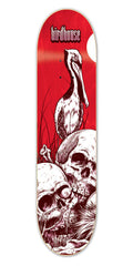 Birdhouse Team Aviary Skateboard Deck 8.75 - Red/White