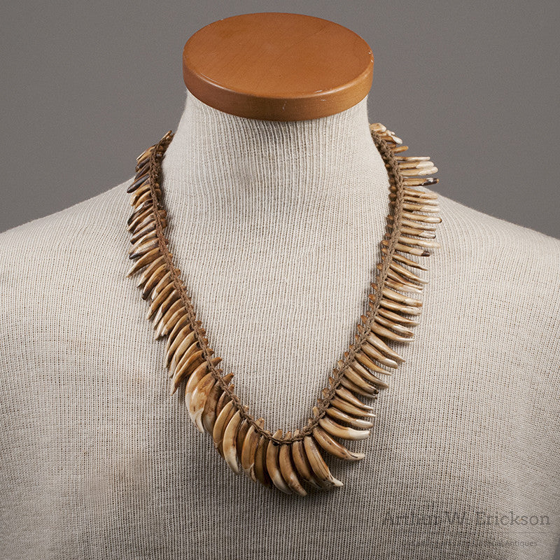 NewGuinea Dog Tooth Necklace - Arthur W. Erickson - 1