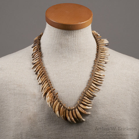 NewGuinea Dog Tooth Necklace