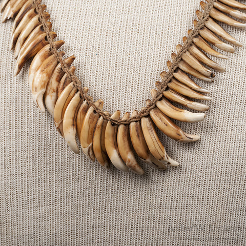 NewGuinea Dog Tooth Necklace - Arthur W. Erickson - 7