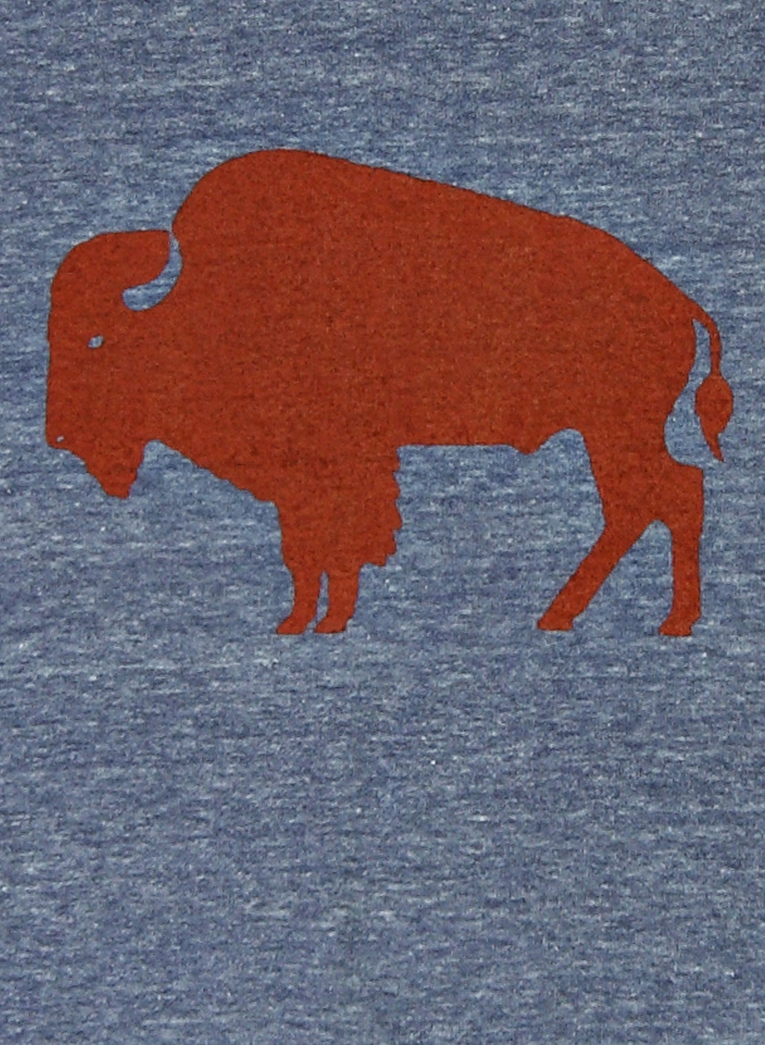 Graphic Tee - Buffalo - Alchemy Design - STAG Provisions - Tops - Graphic Tee