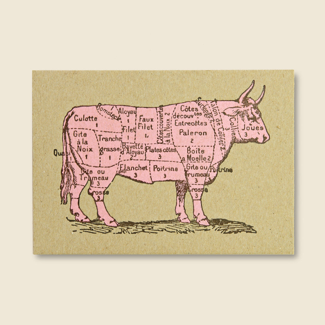 Paper Goods Beef Diagram Postcard