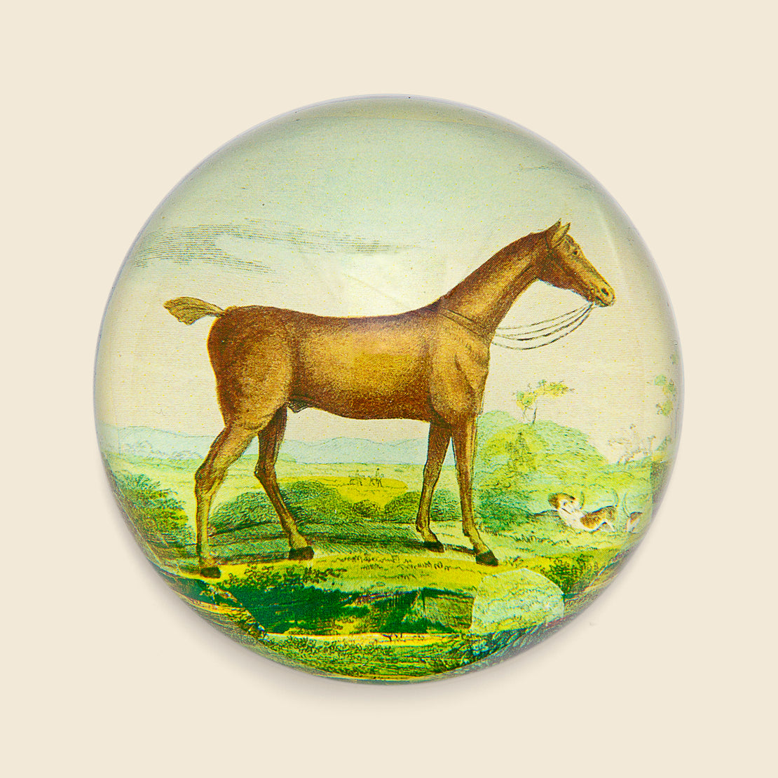 John Derian Dome Paperweight - Brown Horse