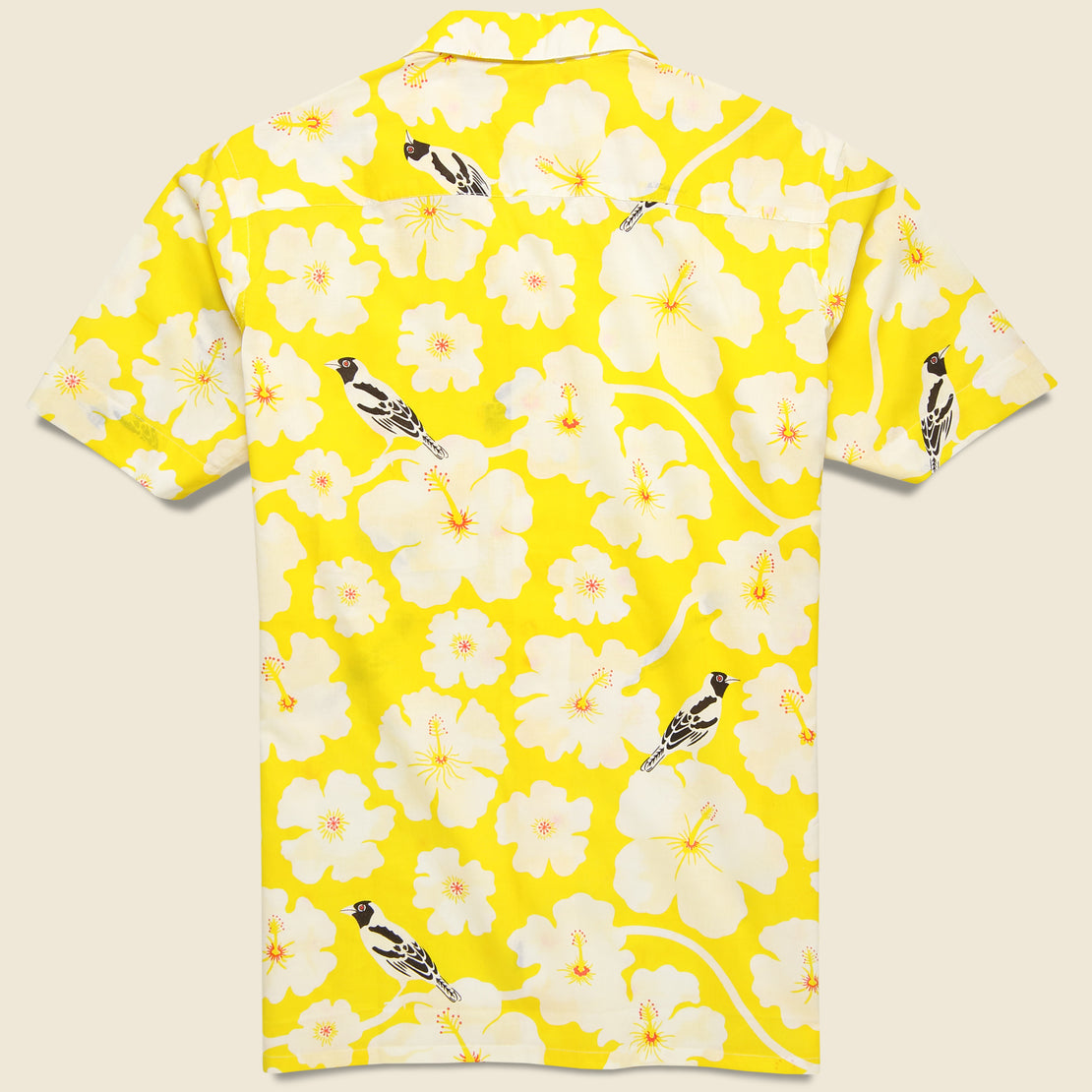 Kendrick Shirt - Yellow