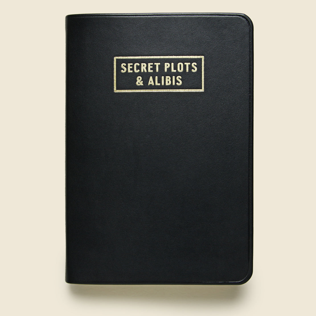 "STAG Notebook - ""Secret Plots and Alibis"""