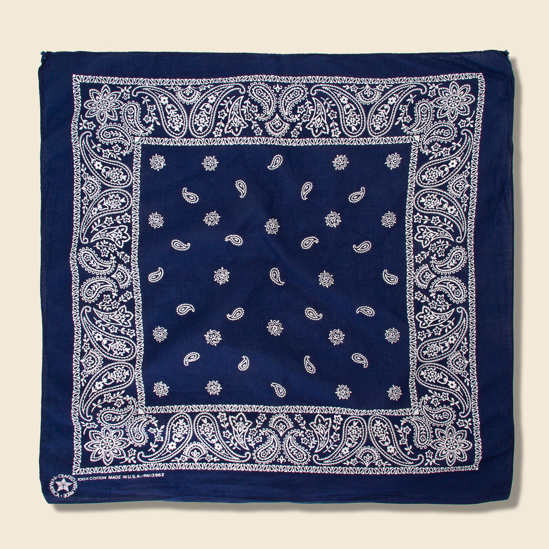 Vintage Cotton Paisley Bandana - Blue/White