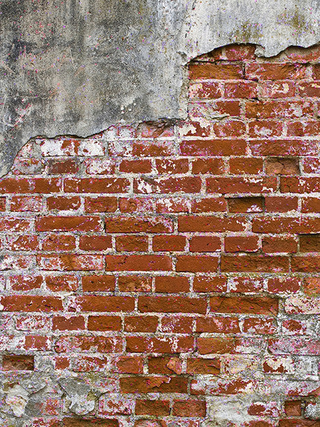 Grunge Brick Wall Red Printed Photo Background / 147 - DropPlace