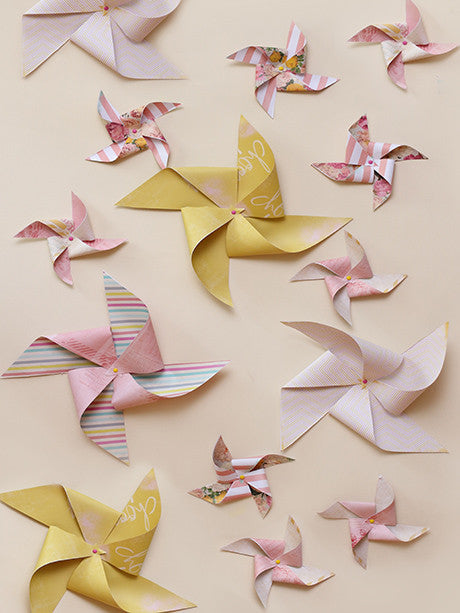 Pinwheeling Photography Backdrop / 1644 - DropPlace