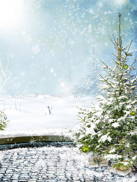 Snowy Days Printed Photography Background / 212 - DropPlace
