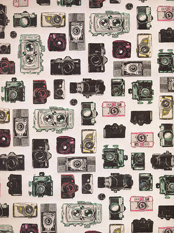 Vintage Cam Printed Photo Backdrop / 222 - DropPlace