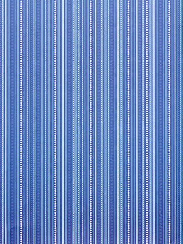 Winter Blue Stripe Printed Photography Backdrop / 2594 - DropPlace