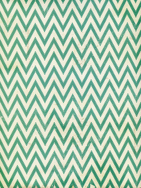 Green Zig Zag Photo Backdrop / 2598