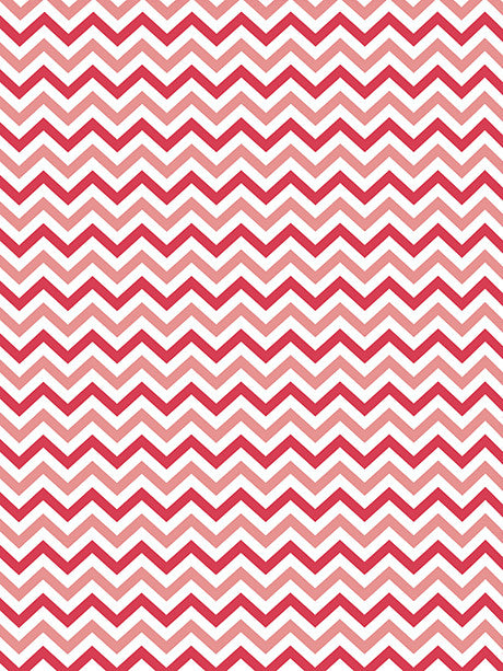 Soft Red Chevron Printed Photography Backdrop / 2687