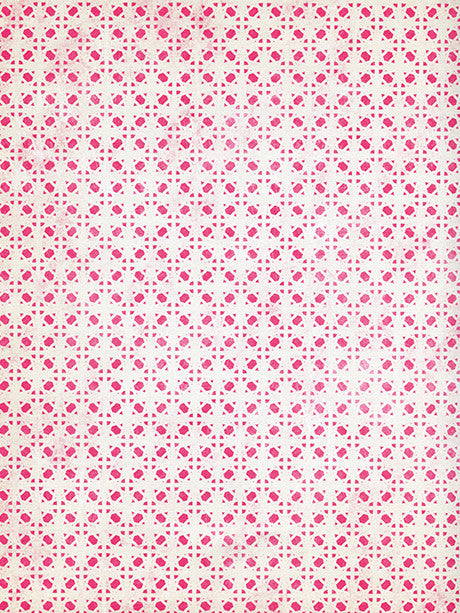 Strawberry Shortcake Printed Photography Backdrop / 3233