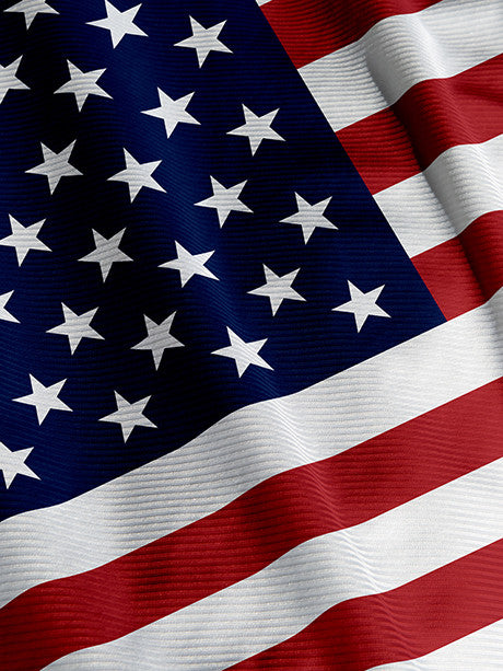 America the Beautiful Flag Patriotic Photography Backdrop Printed Photography Backdrop / 519 - DropPlace