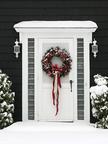 Winter Door Photography Backdrop / 617 - DropPlace